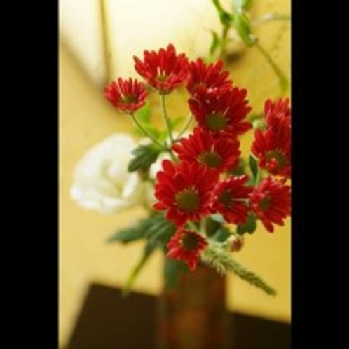客室の生け花