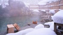 【露天風呂】藤の花房 (冬)