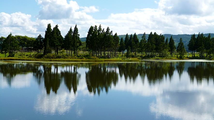 【鳥海高原花立牧場】ホテルから車で約40分 北欧を思わせるような景色