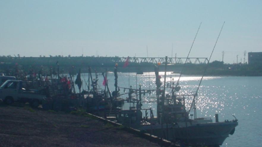 せせらぎパークから海側に 遊歩道終点 古雪漁港