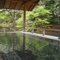 【滝見露天 森のこだま】泉質は美肌成分たっぷりでお肌に優しい。森林浴と湯あみをお楽しみください。