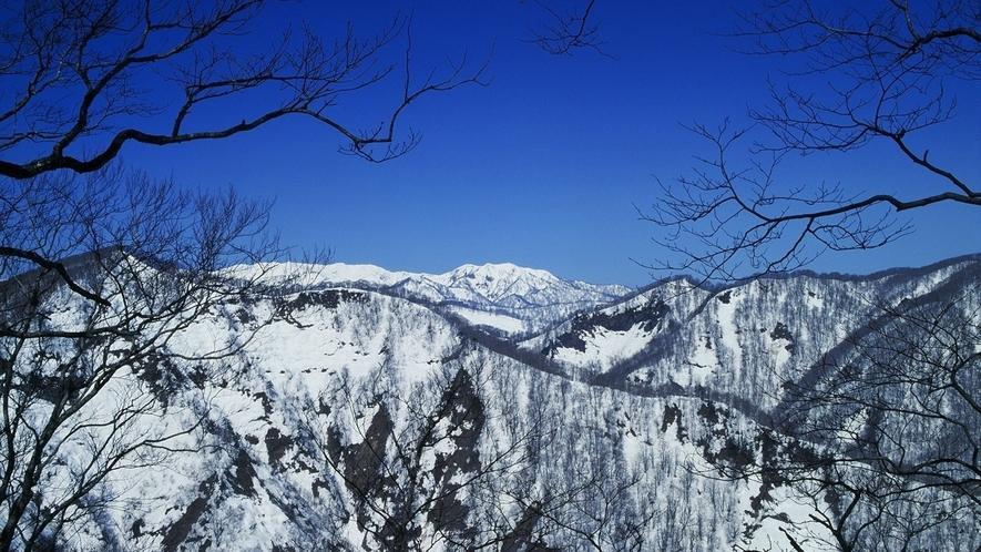 *【冬の白神山地】空気が澄んだ冬は、空と山のコントラストが際立ちます。
