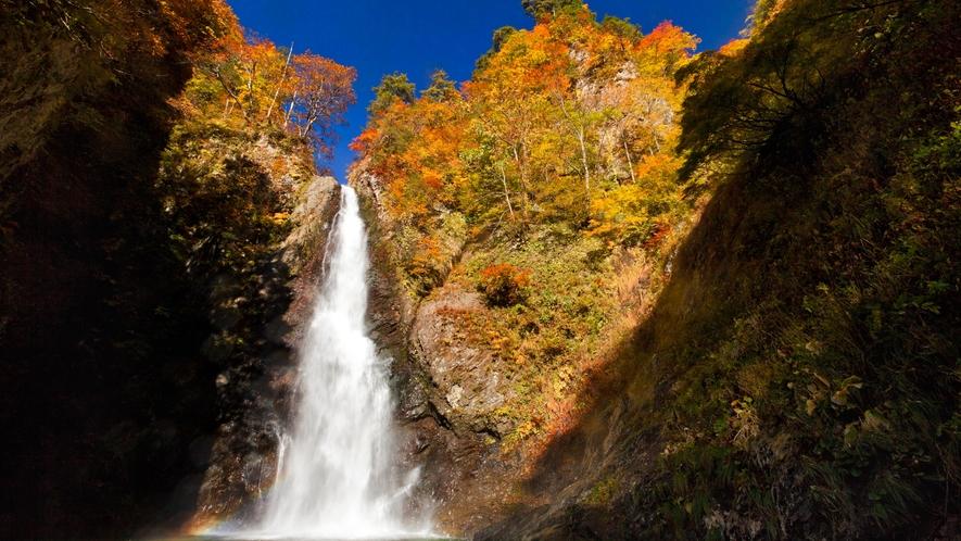 *秋の白神山地/暗門の滝も美しい紅葉に包まれます。世界遺産地域内で最も人気のコース。