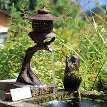 庭苑の池 ゆっくりとした田舎時間が流れます