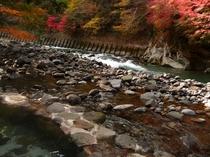 露店風呂と狩野川渓谷の紅葉