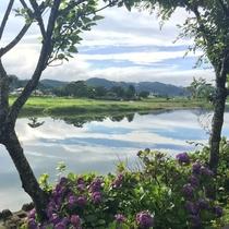 *【久慈川一例】当ホテルの目の前にあり、四季折々の風景をお愉しみいただけます