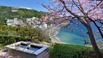 ロビー前の足湯(桜の季節)
