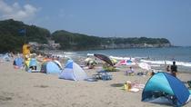 今井浜海水浴場 夏の様子