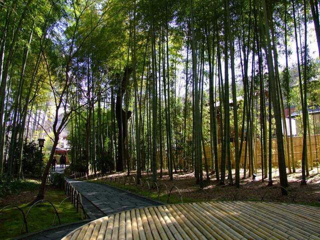 【竹林の小径】当館から修禅寺や独鈷の湯周辺まで約10分でいける遊歩道になります。