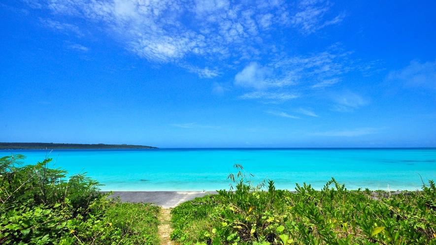 【周辺】ホテルから徒歩数分で前浜ビーチです!