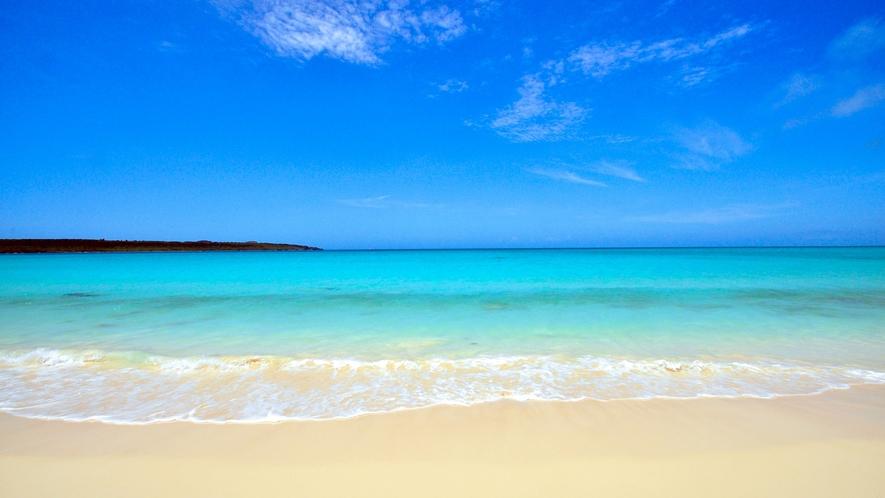 【周辺】宮古島一美しいといわれる前浜ビーチです!