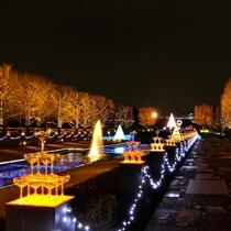 ■国営昭和記念公園■~Winter Vista Illumination 2017~ 12/25まで