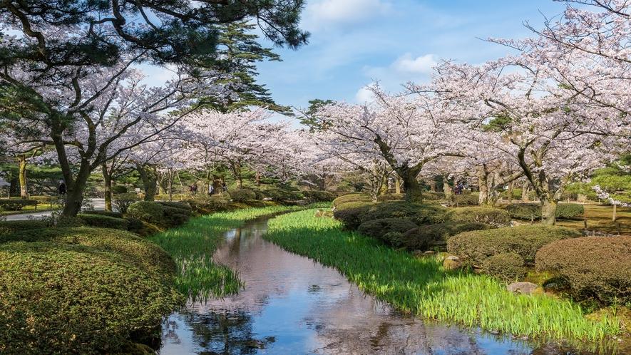 兼六園(春)