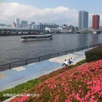 隅田川散策