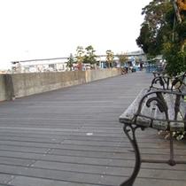 【周辺散策】海沿いの散歩道をゆったり散策してみませんか?