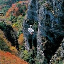 寒霞渓ロープウェイ(秋)