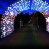 2019年ジオ・イルミネーション~光のタイムトンネル~