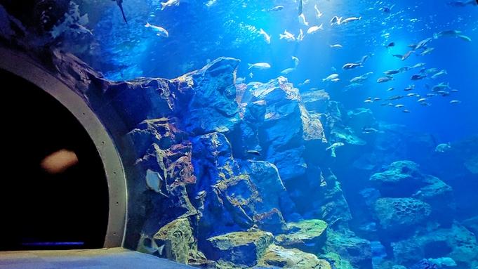 ◆男鹿水族館チケット付◆海のアイドルに癒されよう!当館から車で10分♪GAOプラン