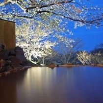 ライトアップされた庭と露天風呂