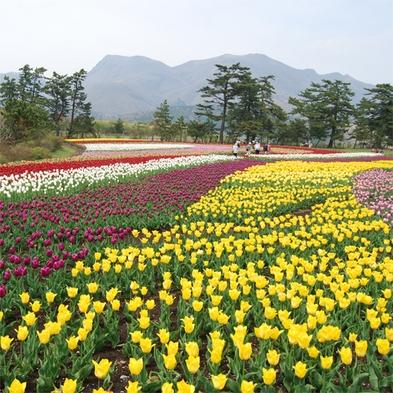 花の香りに癒される♪くじゅう花公園の入場チケット付 お得プラン!!