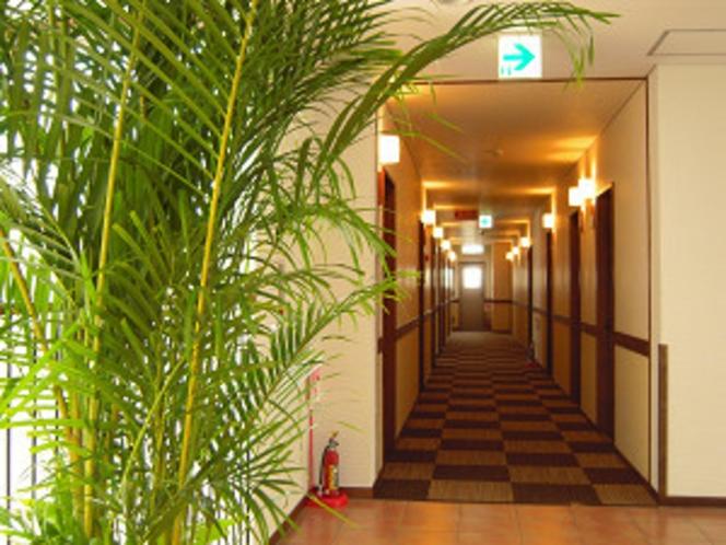 お部屋の廊下風景