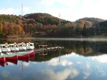 【聖高原・聖湖】紅葉の見頃は10月中旬(上田館から車で25分)