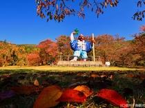 【キティパーク】紅葉の見頃は10月下旬(上田館からお車で15分)