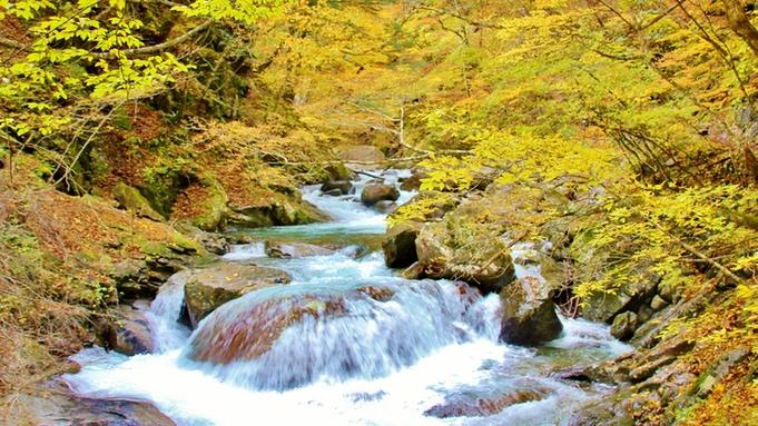 【紅葉】人気の西沢渓谷or昇仙峡を訪れてみませんか?≪二大特典付≫