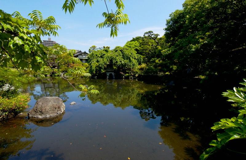 三島市の佐野美術館はこんなステキな池のあるお庭があります。