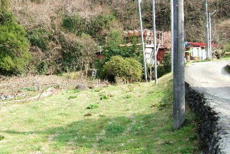 南足柄ののどかな小道の先にある、《薪釜焼きのパン屋さん》