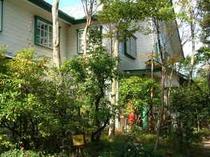 緑濃い季節は太く大きくなったブナの木やプランターのかわいい花たちがお迎えします