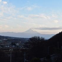 富士山側客室からの景色