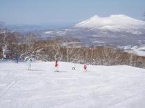 函館七飯スノーパークゲレンデイメージ2