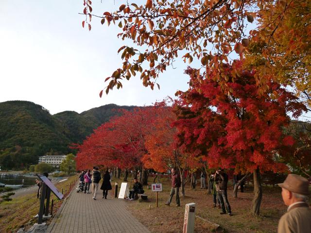 紅葉祭り(3)