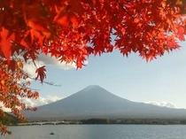 2015.11.4紅葉&富士山