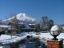レイク忍野よりの冬の富士山