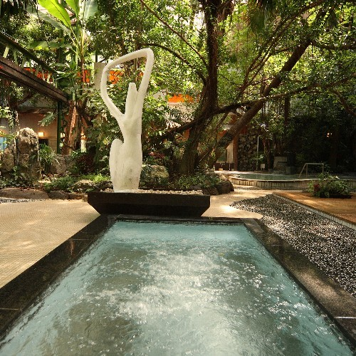 ジャングル風呂