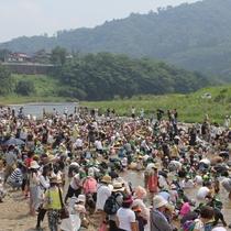 久慈川にて鮎のつかみ取り大会