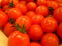 朝食 プティトマト