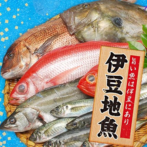 ■沼津港より直接買い付けの伊豆の地魚各種★