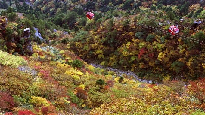 【御在所ロープウェイ往復乗車券付】お料理も選べる♪ちょっとお得に湯の山の空中散歩を満喫プラン!!