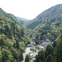 【当館から景色】湯の山の大自然に囲まれた森林浴は特別です♪(夏)