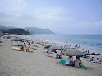 白浜海岸9月