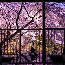 【館内からの眺め -春-】