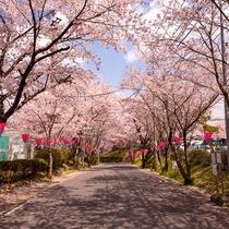 【榊原の景観 -春-】