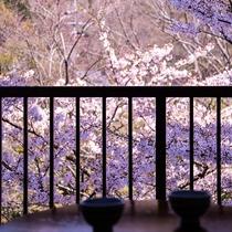 【客室からの眺め】ほっとひと息つきながら、榊原の山々と桜を愛でてみるのも◎