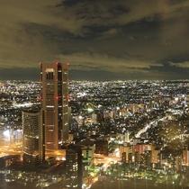 東京都庁展望台の風景