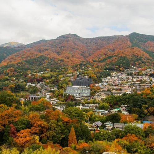 湯河原の紅葉(屋上からの風景)