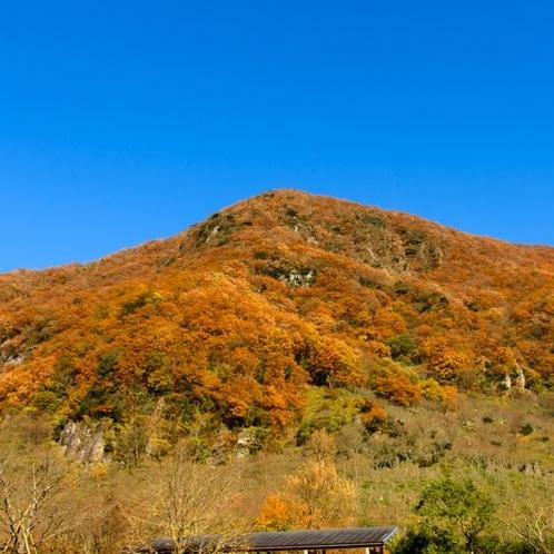 幕山の秋も素晴らしい