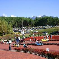 周辺 八ヶ岳自然文化園